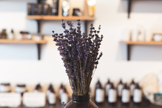 lavender-in-shop_4460x4460
