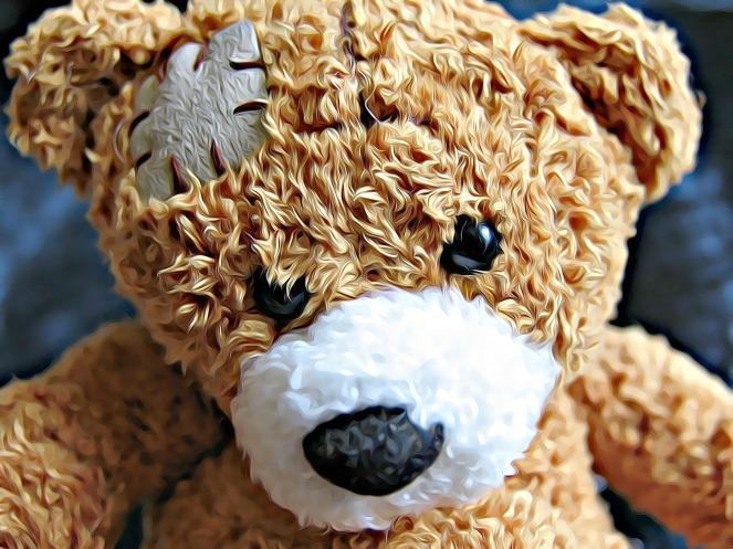 bear-2003391_1920