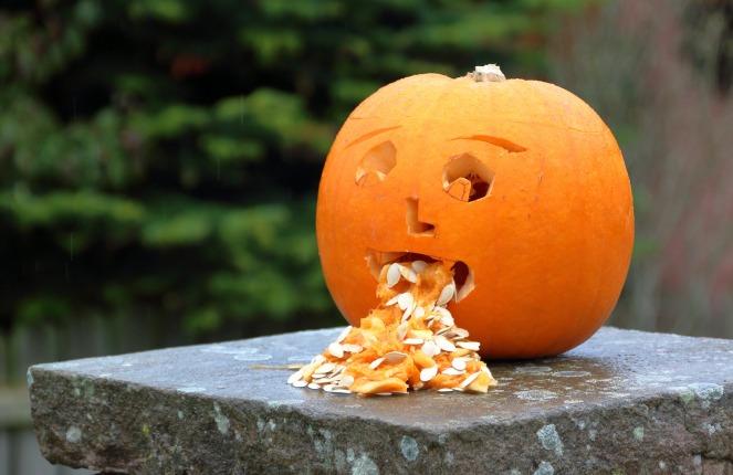 pumpkin-3630614_1920.jpg