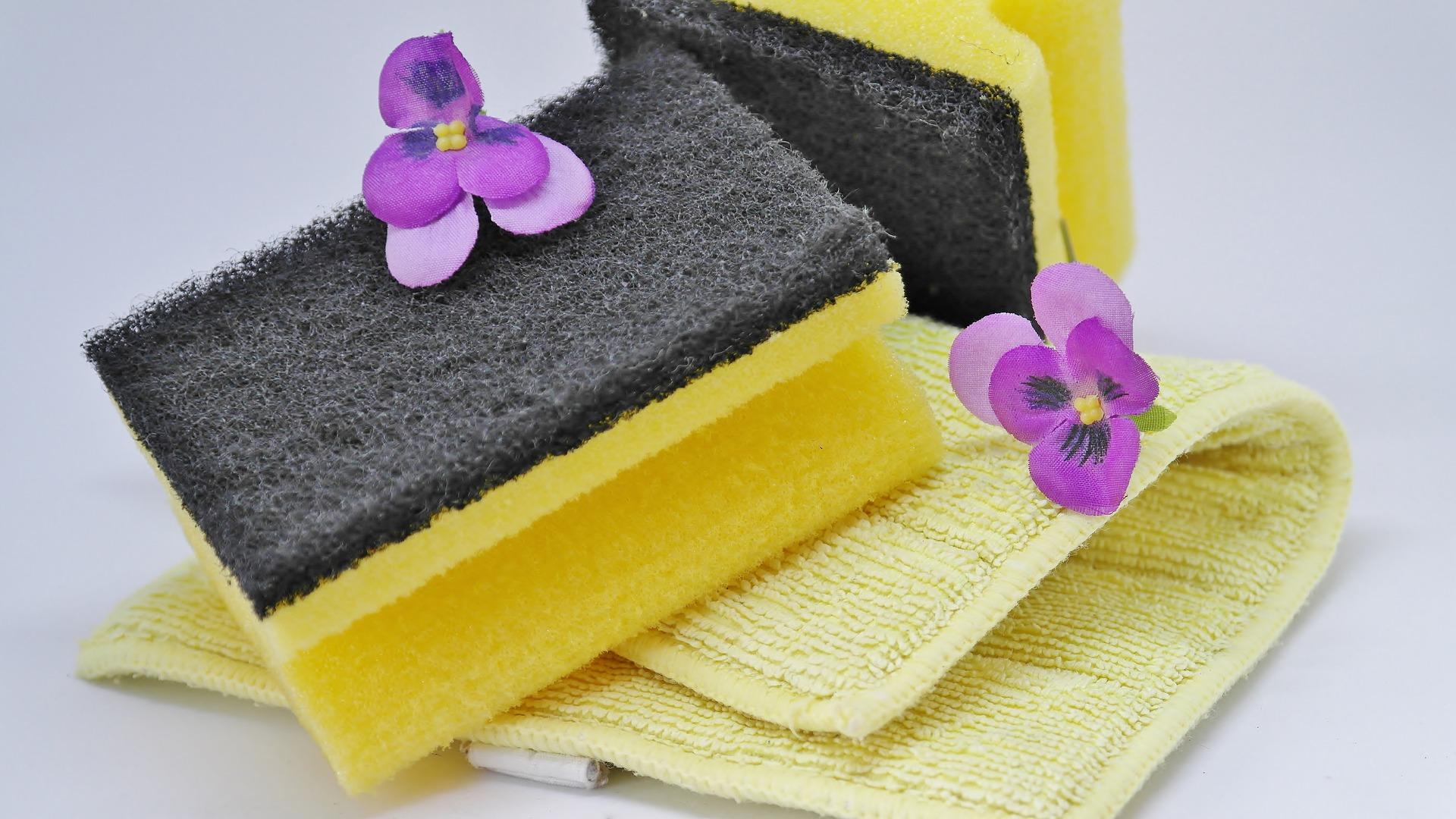 hygiene-3254675_1920.jpg