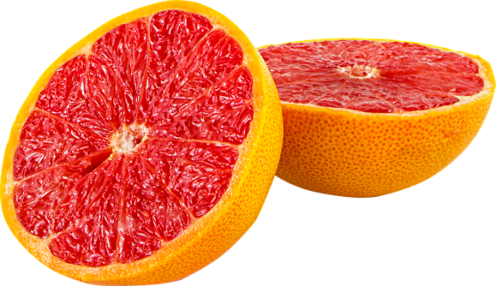 fruit-1220367_640.png