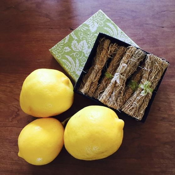 lemon-2720463_640.jpg