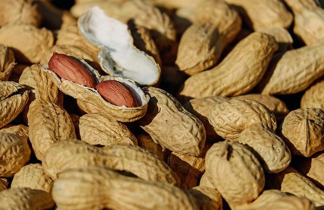 nuts-1736520_640